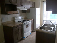 Three bedroom townhouse for rent at 1010-41 Street Millwoods