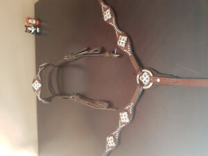 Headstall and breast collar for sale