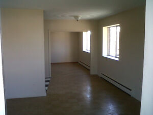 LARGEST one bdrm EAST Hamilton- close to LINK