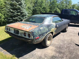 Barracuda body panels wanted