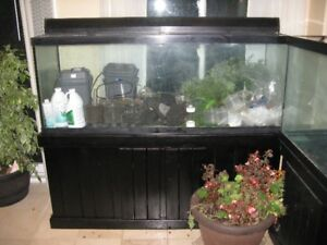 I have a 120 gal fish tank and glass top  $150