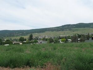 Prime Agriculture Land &Large Home