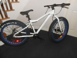 Fat Bike - Great for Snow. NEW _ Never ridden