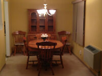 Carleton Place 2 Bedroom Condo (For Sale)