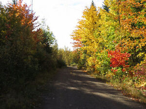 WOODLAND WITH CAMP FOR SALE ON ROUTE 695 NEAR JEMSEG, NB