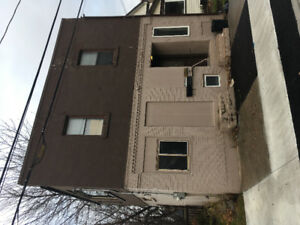 Newly renovated 1 bed close to downtown