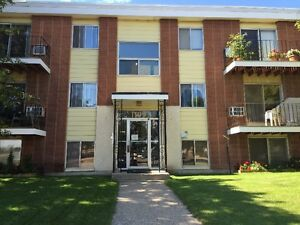 Massey Place / Large 1 Bedroom suite / Non-Smoking