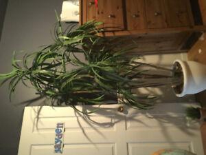Arbre artificiel style palmier