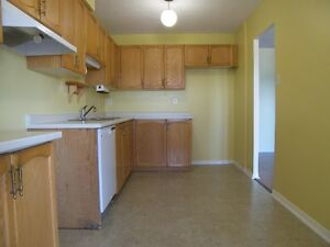 Spacious & Bright Waterloo Apartment! Pool & Utilities Included! Kitchener / Waterloo Kitchener Area image 4