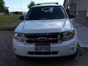 Lady driven 2008 Escape XLT 6 Cylinder