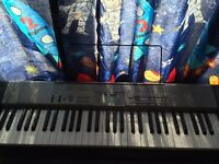 LK 120 key lightning piano / Casio / keyboard