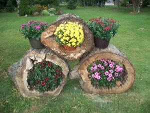 Log Planter Kijiji In Ontario Buy Sell Save With Canada S 1