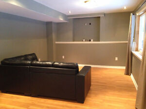 Large one bedroom walkout apartment
