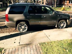Mint 2013 Cadillac Escalade Platinum