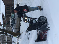 Snow blowing / dump runs / cleaning