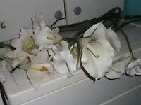 fleurs de soie