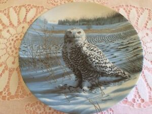 Snowy Owl Collector's Plate Cornwall Ontario image 1