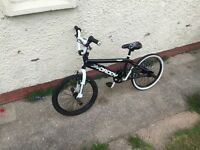 Boys bmx( mountain bike)