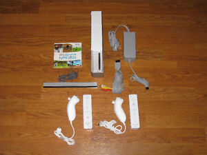 Nintendo Wii System with 2 Controllers and Wii Sports Sarnia Sarnia Area image 1