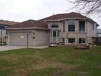 Newly Renovated Raised Ranch in Leamington - 125 Ellison