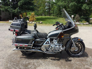 Collectors status Gold wing.