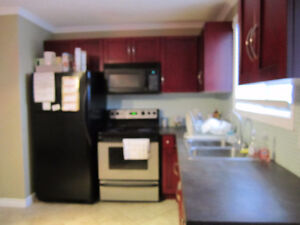 WATERLOO - EXCELLENT BUNGALOW WITH 4 BED ROOMS AVAILABLE Kitchener / Waterloo Kitchener Area image 7