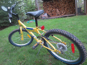 "Boys Miele Mini Cross Bike, 20"", Good for 7-10 yr old"