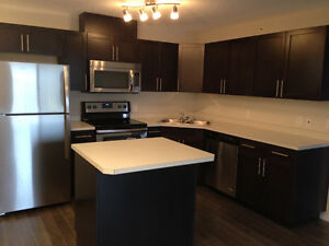 Newly Renovated Clareview Location Condo
