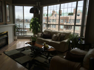 1150 sq ft furnished 2b/2b+ den top floor condo w/ river views