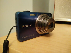 Sony Cyber-shot DSC-WX150 point and shoot 18.2 MP