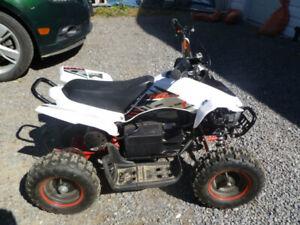 TAO 500 Watt ATV