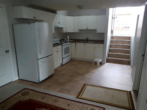 BI-LEVEL HOUSE BASEMENT SUITE  FOR RENT IN SILVERBERRY AREA