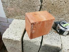 Half bricks i had these cut at brick yard a few hundred