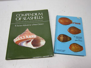 Great Pair of Books on Seashells - Reduced