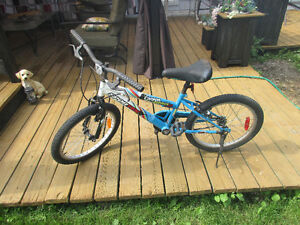 Kid's bike for sale: Sportek Canyon Runner