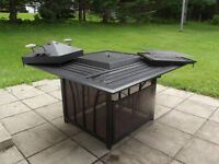 Patio fireplace/grill