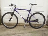 For sale: GT Tequesta mountain bike