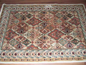Area Rug Persian Style