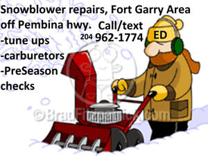 Small engine repairs/tuneups: lawnmowers, snowblowers, etc...