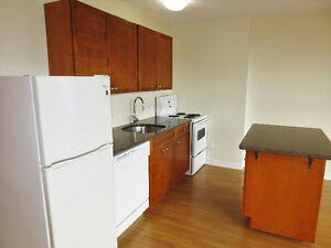 Renovated Bachelor w/Dishwasher! On Lemarchant St, avail now!!