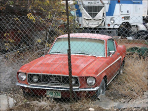 LOOKING for old mustang RECHERCHE vielle mustang