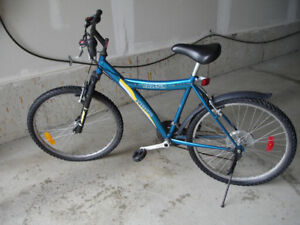 Raleigh Mountain Bike - Adult