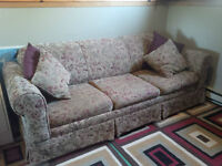 Hide-a-Bed / Pull out couch