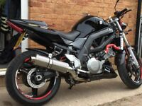 Suzuki SV1000 classic one of the best you will find