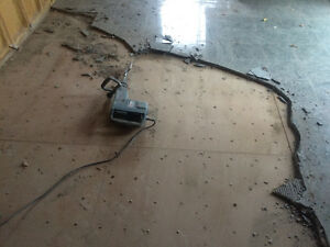 """FLOOR REMOVAL EXPERTS! """"DYNASTY DEMO""""  289.456.4083 Cambridge Kitchener Area image 1"""