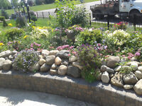 Tip Top Landscaping, Yard Maintenance, & Spring Clean Up