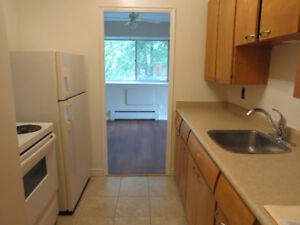 Downtown, oversized 1 bdrm, wont last long, ***ONLY 895***