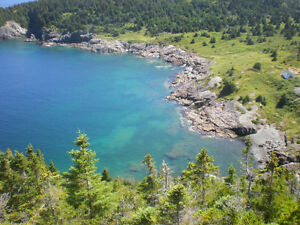 Bacon Cove, Conception Harbour Property