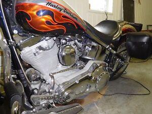Harley Davidson Screamin Eagle Fat Boy