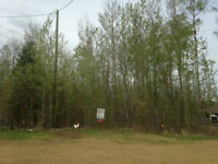 Recreational Getaway 30 mins south of Athabasca